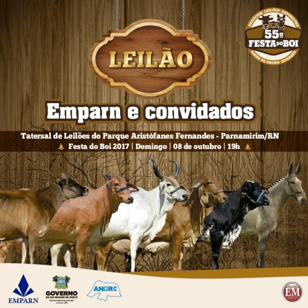 LEILÃO-MIDIAS-01