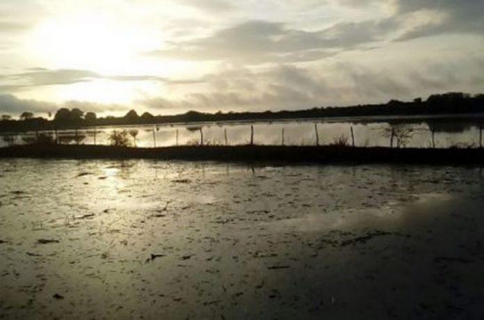 Barragem-do-Manhoso-696x460